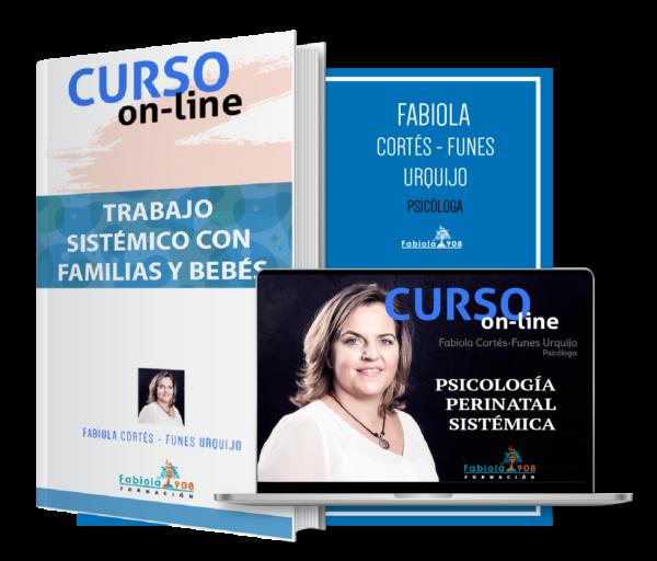 PRODUCTO CURSO INTRDUCCION PERINATAL SISTEMICO FAMILIAS Y BEBE