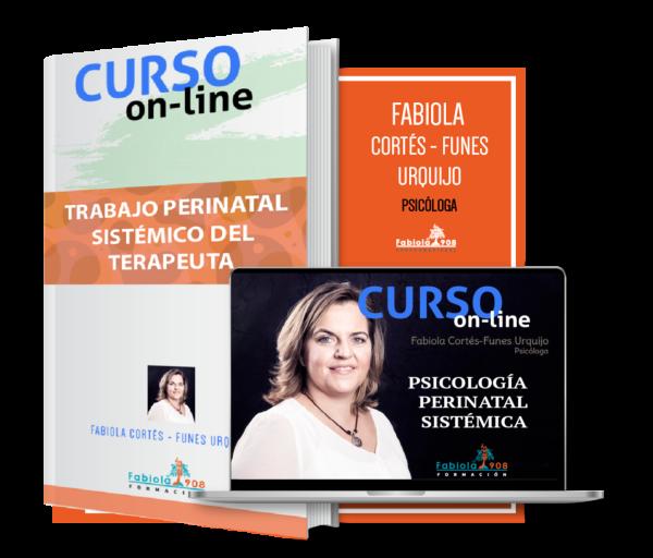 PRODUCTO CURSO INTRDUCCION PERINATAL SISTEMICO TERAPEUTA